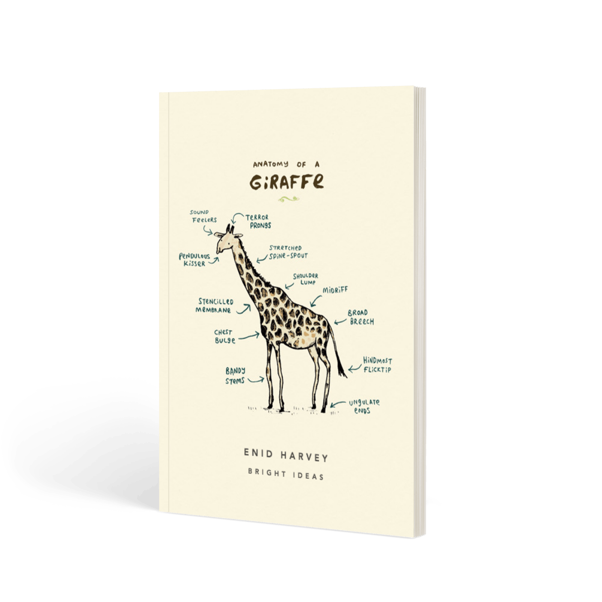 Https%3a%2f%2fwww.papier.com%2fproduct image%2f10054%2f6%2fanatomy of a giraffe 2556 front 1470655107.png?ixlib=rb 1.1