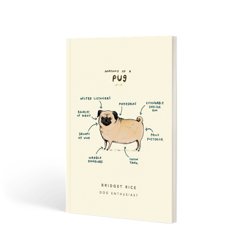 Anatomy Of A Dachshund Lined Notebook Papier