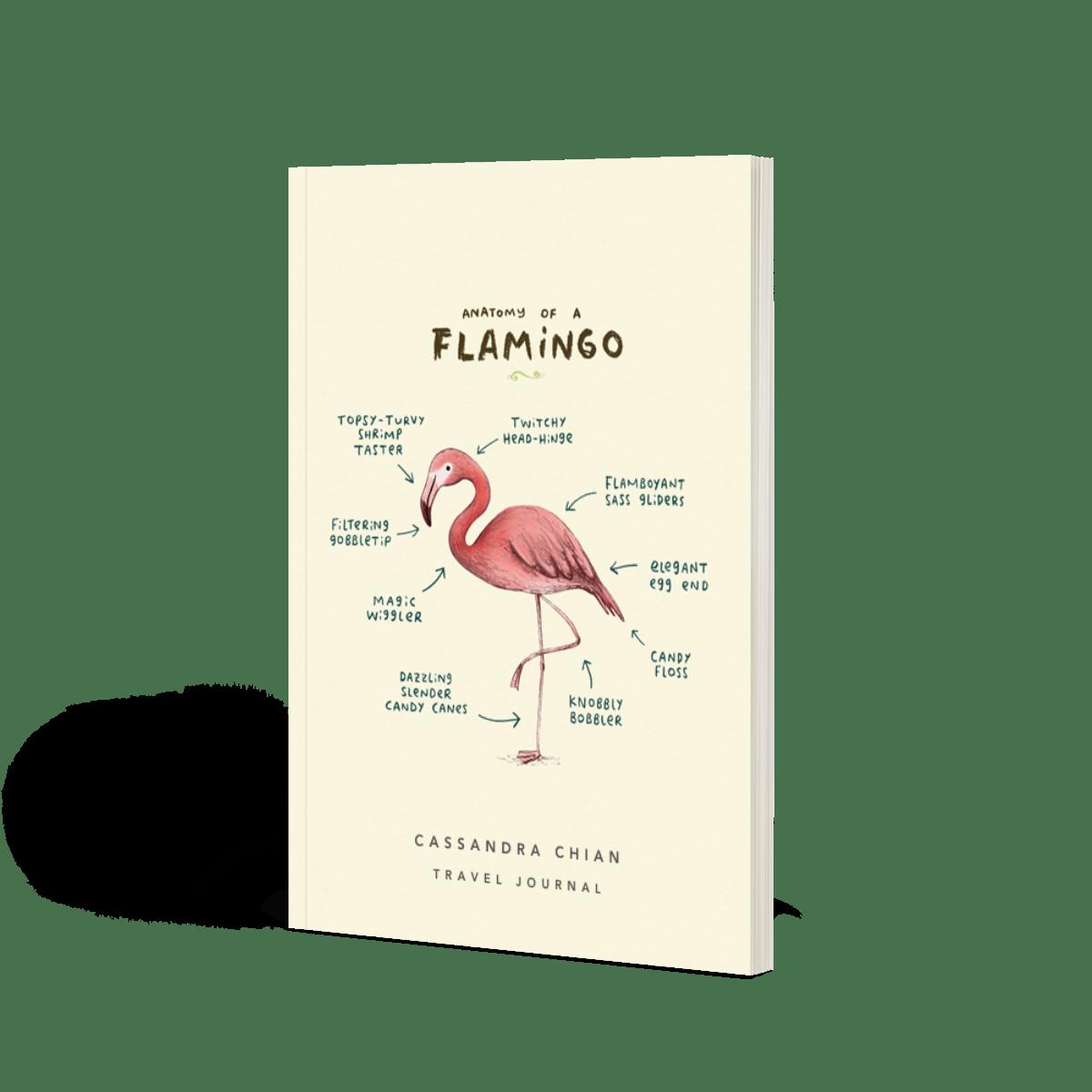 Https%3a%2f%2fwww.papier.com%2fproduct image%2f14634%2f6%2fanatomy of a flamingo 3898 avant 1542811929.png?ixlib=rb 1.1