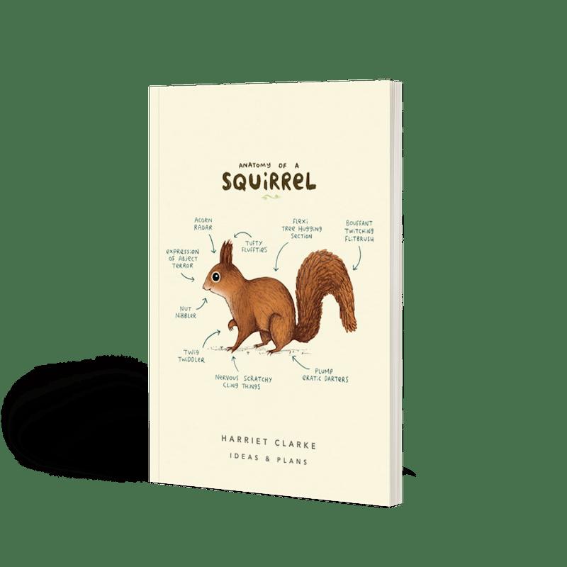 Anatomy Of A Giraffe | Softback Lined Notebook | Papier