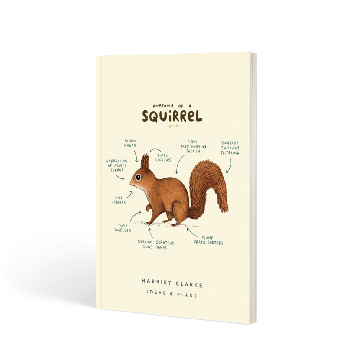 Anatomie Eines Eichhörnchens | Liniertes Notizbuch | Papier