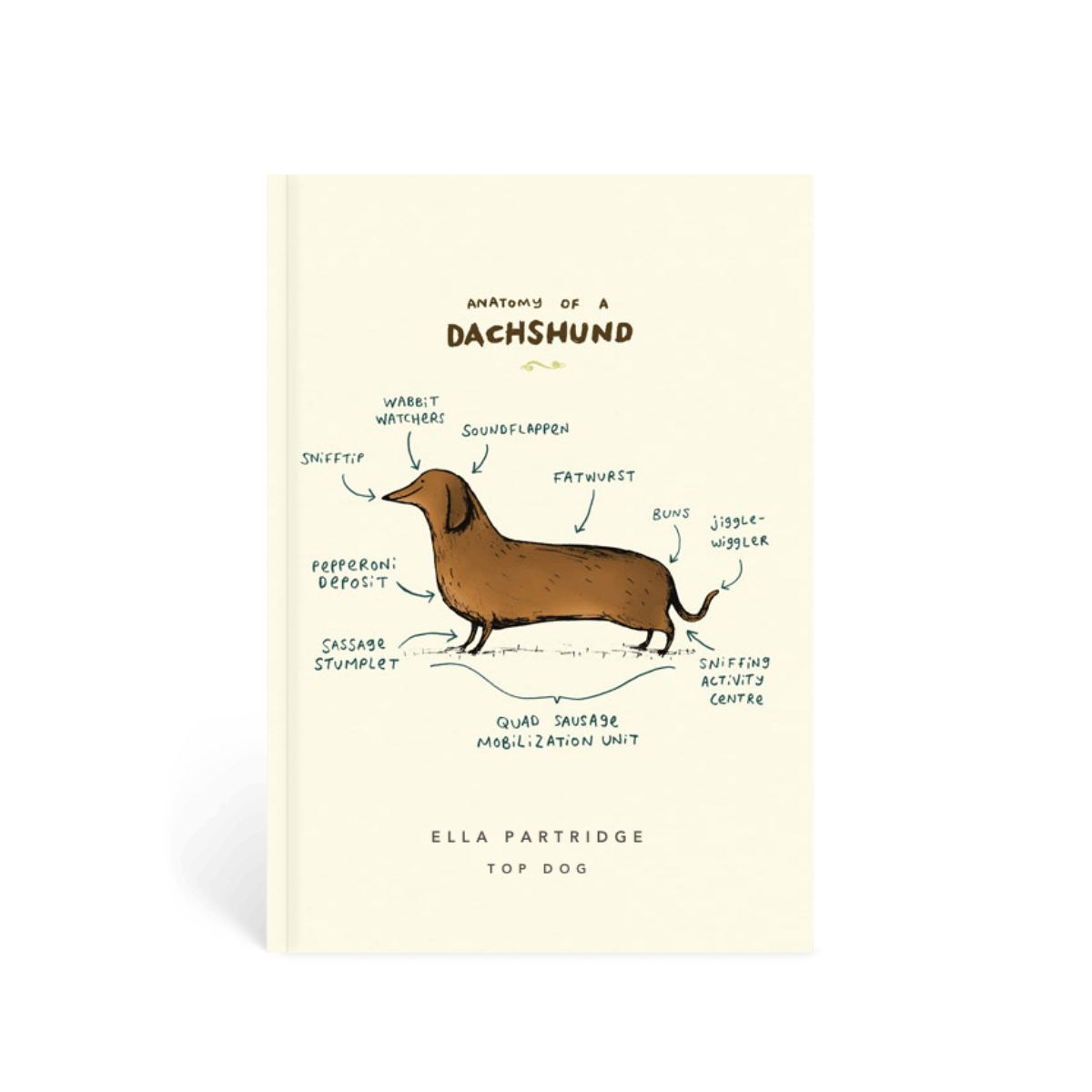 Https%3a%2f%2fwww.papier.com%2fproduct image%2f57206%2f25%2fanatomy of a dachshund 13741 front 1542370522.png?ixlib=rb 1.1