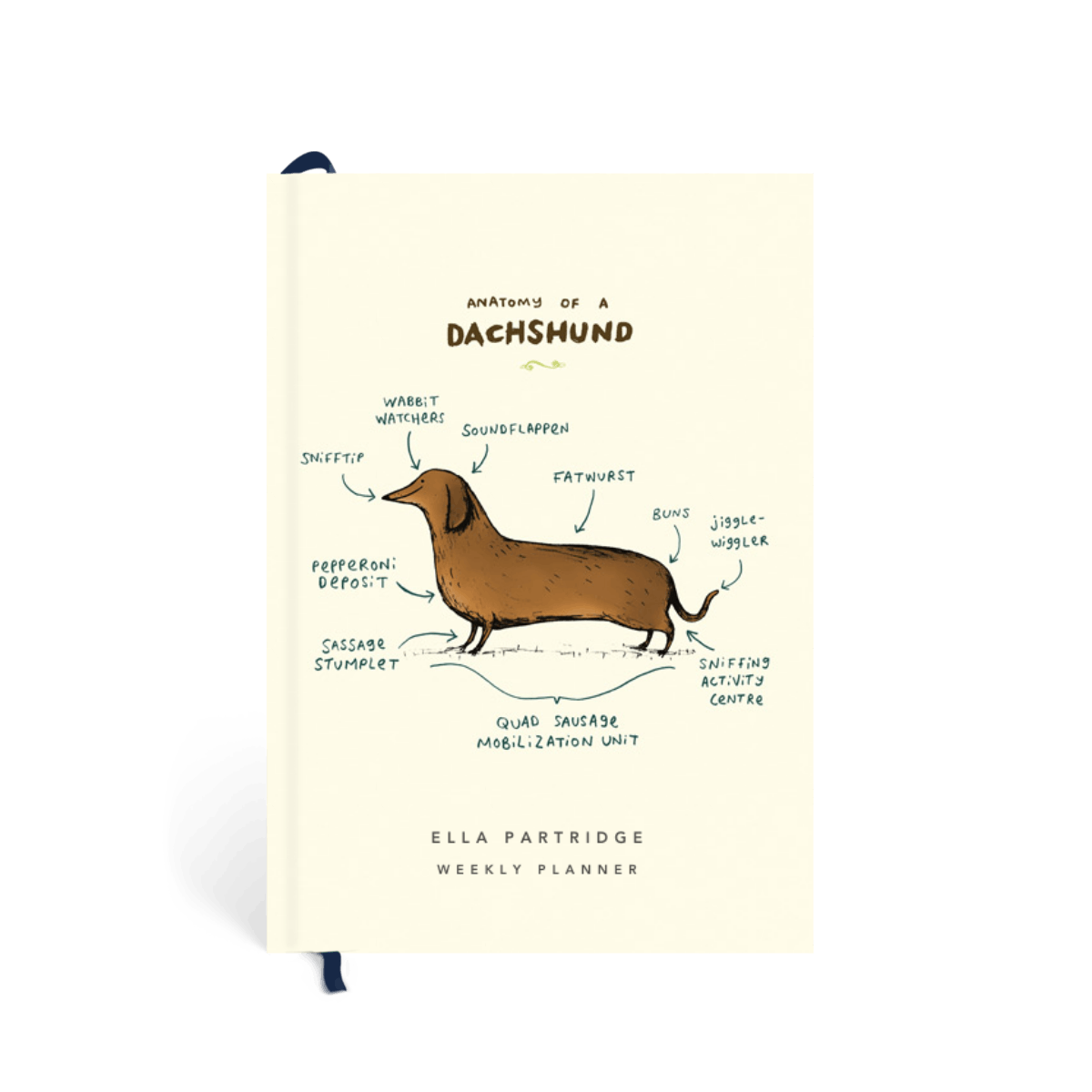 Https%3a%2f%2fwww.papier.com%2fproduct image%2f63569%2f36%2fanatomy of a dachshund 14953 front 1571143873.png?ixlib=rb 1.1