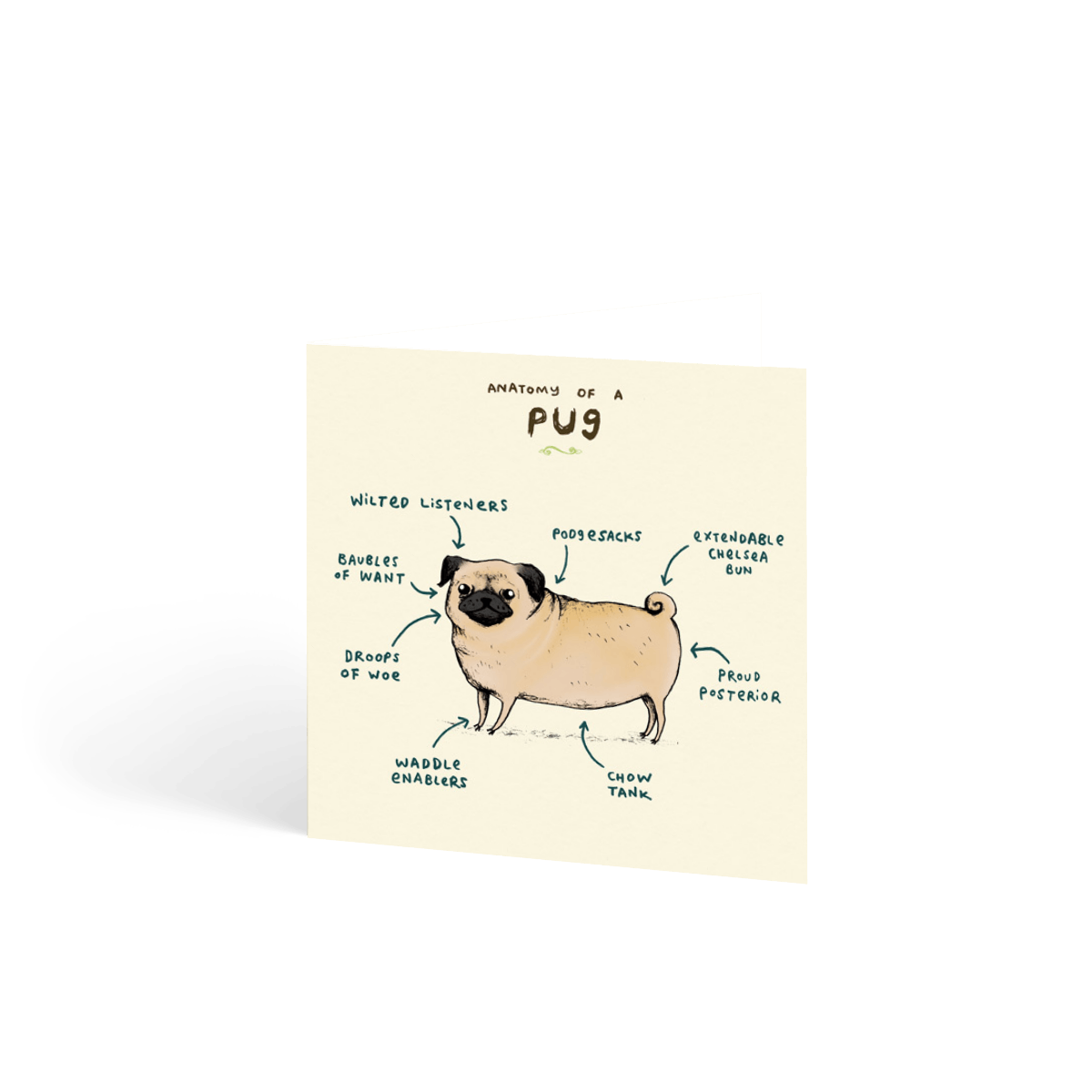 Https%3a%2f%2fwww.papier.com%2fproduct image%2f6832%2f16%2fanatomy of a pug 1677 front 1461770388.png?ixlib=rb 1.1