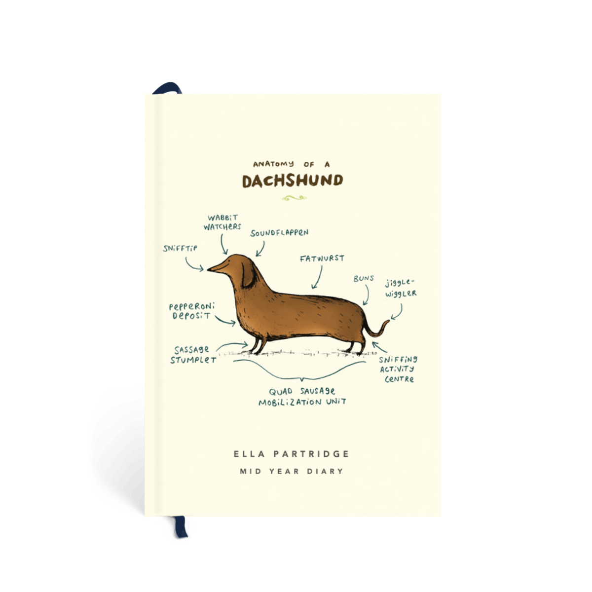 Https%3a%2f%2fwww.papier.com%2fproduct image%2f71978%2f36%2fanatomy of a dachshund 16980 front 1556054042.png?ixlib=rb 1.1