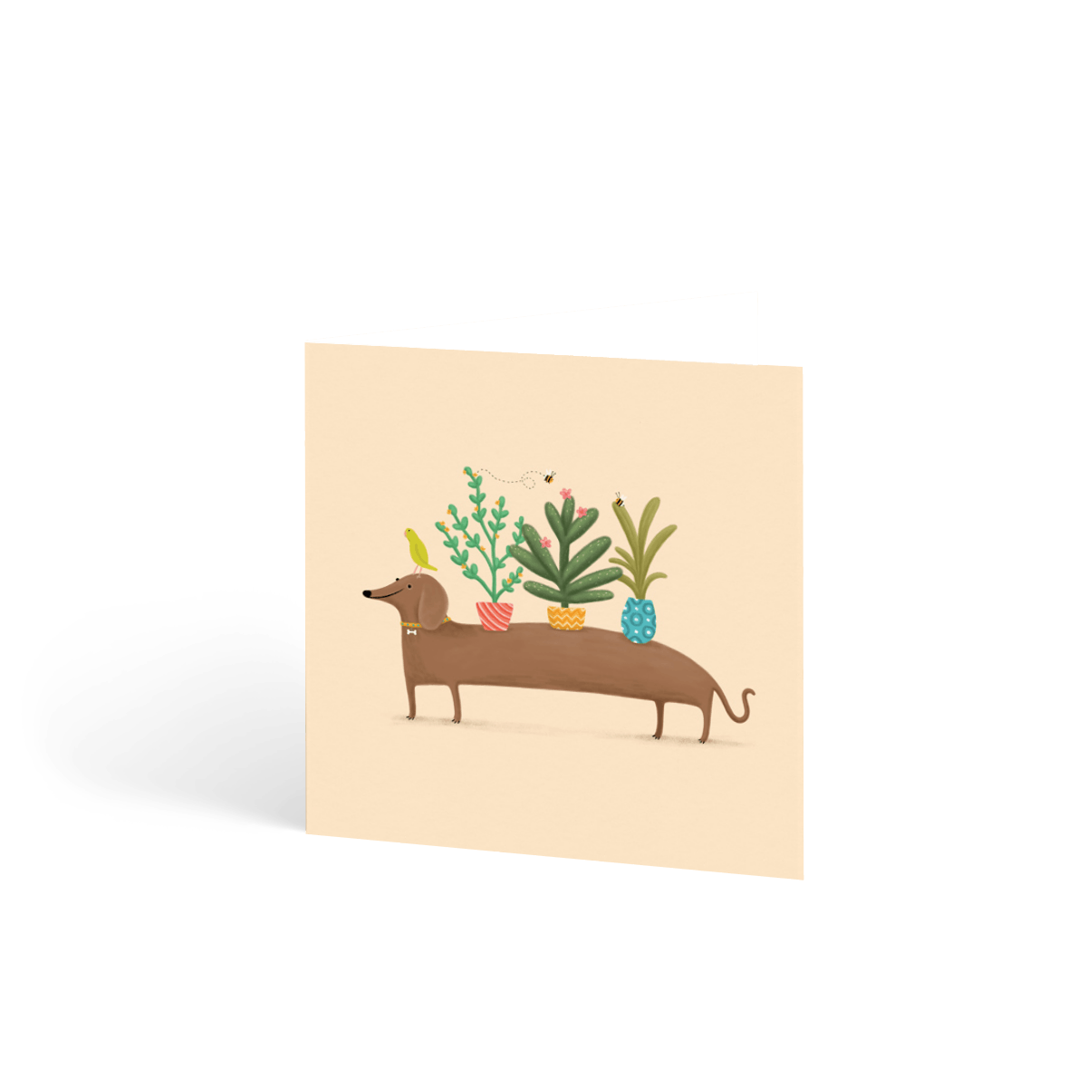 Https%3a%2f%2fwww.papier.com%2fproduct image%2f79681%2f16%2fdachshund plants 18818 front 1560958133.png?ixlib=rb 1.1